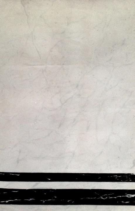 Finto marmo Bianco di Carrara-Nero del Belgio